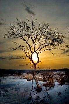 Stunning image of the sun peeping through