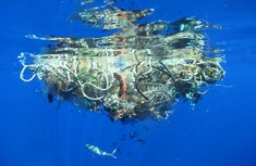 10 Facts about the great pacific garbage patch.  #6 The Garbage Pacific Garbage Patch is Too Big and Too Costly to Clean Up.