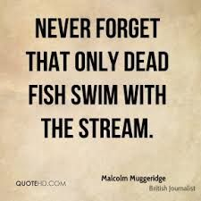 don't be a dead fish...
