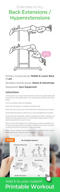 Back Extensions / Hyperextensions –Great gym exercise for your lower back. ✸ Add it to your custom printable workout at http://WorkoutLabs.com!