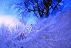 Frost fractal