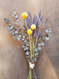 ravenda goldenball eucalyptus...by jasmin
