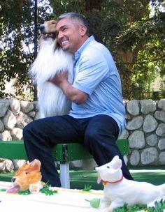 Cesar and Lassie...