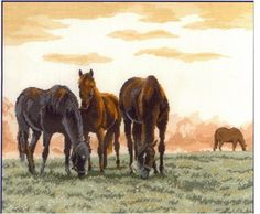 Morning pasture buddies