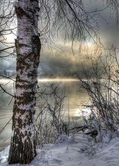 Winter Landscape, Landscape Art, Landscape Paintings, Christmas Landscape, Winter Photography, Landscape Photography, Nature Photography, Travel Photography, Winter Pictures