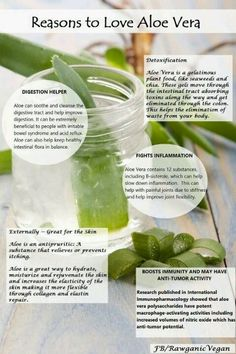 35 Wonderful Benefits Of Aloe Vera Juice