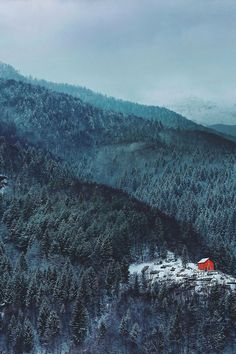 Bored Panda: Lonely Little Houses Lost in Majestic Winter Scenery. You know, in case I need towns in winter woods to describe. Little Cabin, Little Houses, Red Houses, Tiny Houses, Albania, Pic Tumblr, Cabin In The Woods, Snowy Woods, Winter Scenery