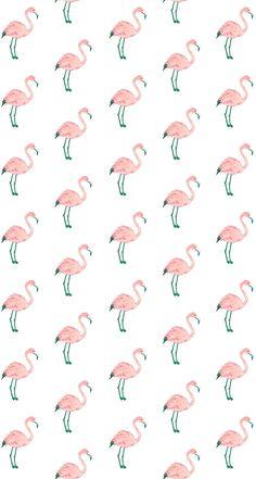Pink bird wallpaper flamingos we heart it wallpaper pink hot pink bird wallpaper . Flamingo Wallpaper, Bird Wallpaper, Animal Wallpaper, Tumblr Wallpaper, Screen Wallpaper, Pattern Wallpaper, Cute Backgrounds, Cute Wallpapers, Wallpaper Backgrounds