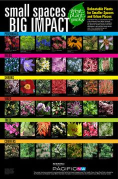 Link to Great Plant Picks Lists and Search Page