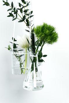 DIY Pflanzen Deko (2)