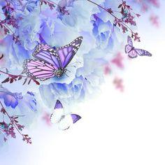 Fototapeta Kwiatów tle z róż i motyli, kwiatów 365 dni na zwrot ✓ Miliony wzorów ✓ 100% ekologiczny druk ✓ Profesjonalna obsługa i doradztwo ✓ Skonfiguruj online!