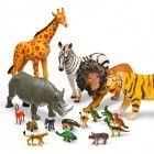 Zwierzęta #animals