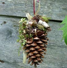 Hanging pinecones
