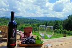 See our top Asheville restaurants guide to our favorite dining spots and places to eat in downtown Asheville, near Biltmore and western North Carolina. Asheville North Carolina, North Carolina Mountains, Nc Mountains, Appalachian Mountains, Ashville Nc, Wine Vineyards, Biltmore Estate, Tours, Country
