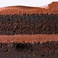 Chocolate Sour Cream Cake with Fudge Frosting