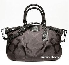Coach-sweet bag