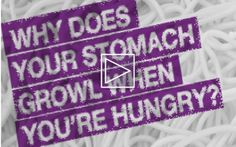 Interesting!  The Arizona Science Center explains why your stomach growls when you are hungry.