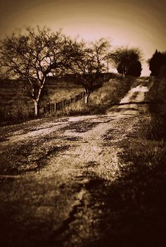 Looks like the road to my grandparent's house...