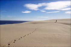 Dunes atTheCuronian Spit, Kaliningrad region, Russia. March 2014.