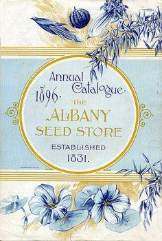 Albany 1896