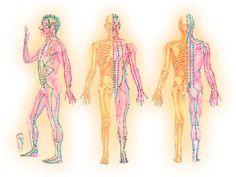 In medicina traditionala chineza, meridianele sunt considerate ca formand sistemul principal de comunicatie prin care circula energia subtila universala a