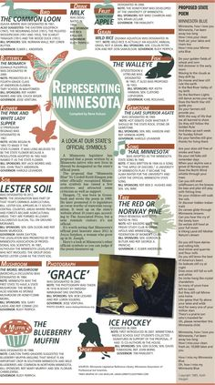 What are the official symbols of Minnesota? This full page chart describes them with details about the history.