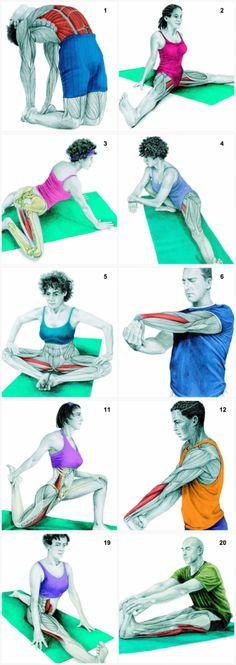 34 картинки о том, какие именно мышцы вы растягиваете во время разных упражнений Fitness Nutrition, Yoga Fitness, Pilates, Body Stretches, Bodybuilding Workouts, Sport, Health Diet, Stretching, Yoga Poses