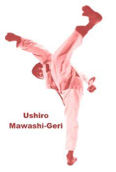 Ushiro Mawashi-Geri My dad's favorite move