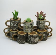 24 Rustic Wedding Favors Succulent Log Planters Rustic Centerpiece Woodland Wedding Outdoor Wedding Decor Natural Wedding Coffee Mugs
