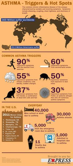 Asthma Triggers and Hot Spots Infographic