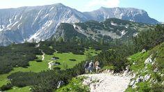 Cestičky se klikatí mezi pastvinami, loukami a horskými velikány.