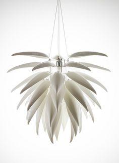 Aloe Blossom. Jeremy Cole