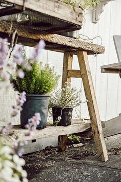 DIY Rustic Plant Bench - Liz Marie Blog