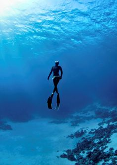 Freediving | Underwater photography by Jacques de Vos