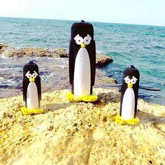 Magellan at sea #israel #tlv #telaviv #ישראל #תלאביב #picoftheday #photooftheday #bestoftheday #nature #happy #cute #love #pretty #beautiful #penguin #blackandwhite #tbt #party #sea #sky #family #friends #smile #handmade #instagram #instadaily #art #design #igers #webstagram