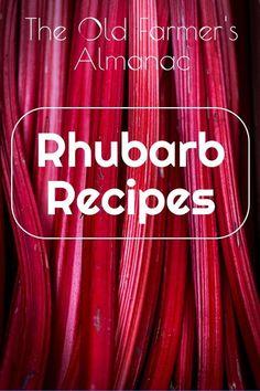Favorite Rhubarb Recipes Best rhubarb recipes, rhubarb jam, rhubarb soup, rhubarb muffins, and more. Rhubarb trivia from The Old Farmer's Almanac. - Check out all the recipes from The Old Farmer's Almanac! Desserts Keto, Rhubarb Desserts, Rhubarb Cake, Delicious Desserts, Rhubarb Dishes, Cooking Rhubarb, Rhubarb Crunch, Blueberry Rhubarb, Best Rhubarb Recipes