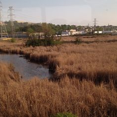 """The lovely view as we """"wait"""" for a New Jersey Transit train in front of us... I'd be shocked by a trans-Hudson delay, but I'm totally not... - @jeffreynyc"""