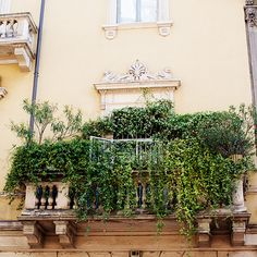 Milan's Green Balcony / photo by The Sartorialist