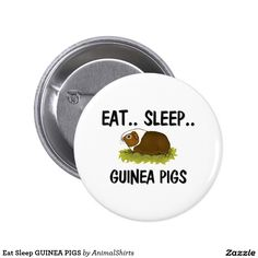 Eat Sleep GUINEA PIGS 2 Inch Round Button