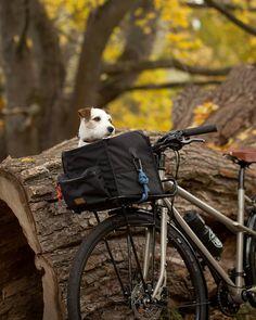 Cycle Chic, Instagram Life, Bradley Mountain, Bicycles, Backpacks, Bags, Handbags, Backpack, Bike