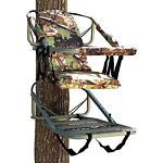 Selecting a Tree Stand