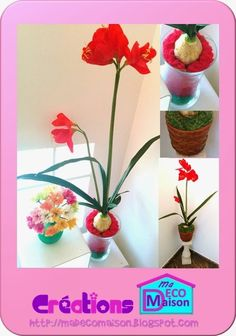 Créations Ma Déco Maison: Jolie fleur rouge