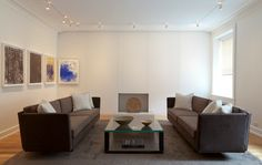 Track Lighting Living Room Design Ideas, Pictures, Remodel And Decor