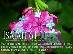 Bible Verses Isaiah 61:11 Quote on God's Love