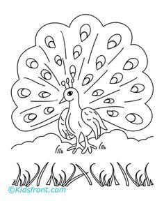 simple animal coloring pages how to draw a peacock for kids step