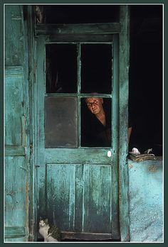 Middle East Turkey Aegean Izmir Tire  green door gray cat