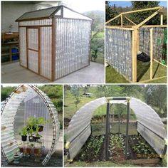 Building A Bottle Greenhouse