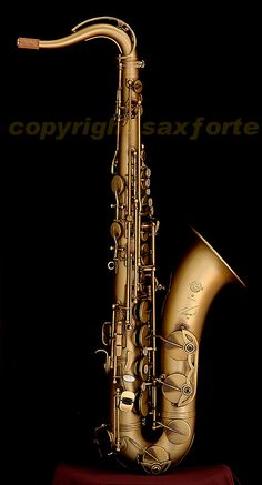 Selmer Reference 54 Tenor. I'd love a Mark VI but this is good too. Older and maybe better quality than a Mark VI