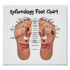 Póster reflexology del pie   Zazzle.com Reflexology Massage, Foot Massage, Foot Reflexology Chart, Lymph Massage, Massage Tips, Listerine Foot Soak, Foot Chart, Sleep Deprivation, Massage Therapy
