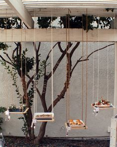 Hanging Garden Of Appertisers - creative possibly cheaper idea if you are tired of 'food on the table'!